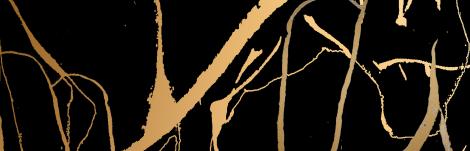 panthère d'or 2